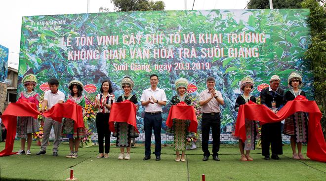 Lễ hội tôn vinh cây chè tổ và khai trương không gian văn hóa trà Suối Giàng
