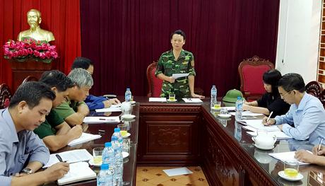 Chủ tịch UBND tỉnh Đỗ ĐỨc Duy phát biểu tại cuộc làm việc.