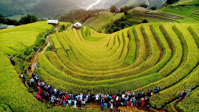 Ruộng bậc thang Mù Cang Chải mỗi năm thu hút hàng ngàn du khách, nhiếp ảnh gia trong và ngoài nước. Ảnh: Thanh Miền