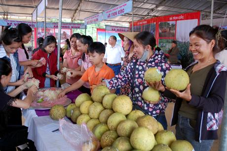 Sản phẩm bưởi đặc sản Đại Minh có 15 gian trưng bày tại Hội chợ quê.