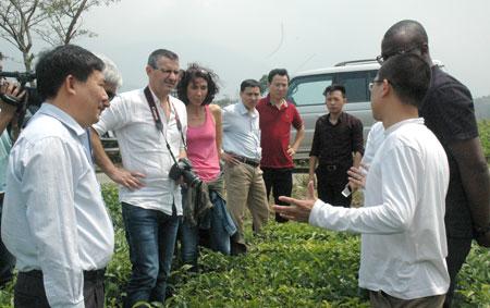 Đoàn công tác Hội đồng tỉnh Val de Marne cùng lãnh đạo Sở Nông nghiệp và Phát triển nông thôn, Sở Ngoại vụ và huyện Văn Chấn thăm đội chè Thác Hoa, xã Sơn Thịnh, huyện Văn Chấn