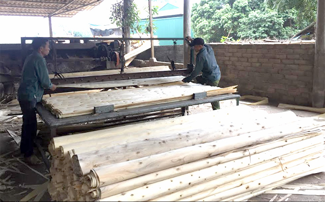 Các cơ sở chế biến gỗ rừng trồng luôn đóng góp tích cực cho ngân sách địa phương ở Yên Bình. (Ảnh: Thủy Thanh)