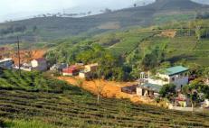 15 hộ dân sinh sống ở chân đồi Cao, tổ 9, thị trấn Nông trường Liên Sơn đang sống trong cảnh nơm nớp lo sợ khi mùa mưa đến.
