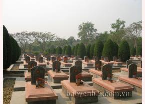 Những hàng bia mộ mang hình Ngôi sao vàng 5 cánh trên nghĩa trang Độc lập.