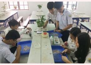 Nhóm học sinh đang chế tạo sản phẩm gạch polymer từ nhựa thải - Ảnh: Báo Tài nguyên môi trường.