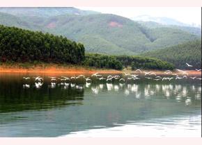 Nhịp sống mới trên hồ Thác. (Ảnh: Thanh Miền)