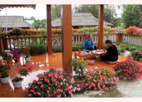 Khuôn viên rực rỡ sắc hoa của gia đình bà Lò Thị Dâng.