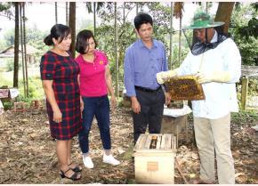 Ông Trần Văn Ly chia sẻ kinh nghiệm, kỹ thuật nuôi ong lấy mật.