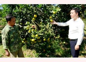 Lãnh đạo xã Mường Lai, huyện Lục Yên động viên nhân dân phát huy lợi thế địa phương để phát triển cây ăn quả có múi.