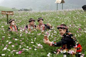 Cánh đồng hoa bướm trên bình nguyên Khai Trung luôn hấp dẫn các du khách thập phương tới chiêm ngưỡng.