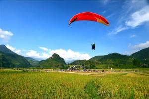 """Festival dù lượn """"Bay trên mùa vàng"""" là một trải nghiệm thú vị của du khách khi đến Mù Cang Chải."""