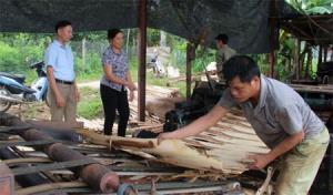 Xưởng chế biến gỗ rừng trồng của anh Lương Văn Công, thôn Phạ 3.