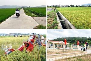 Xây dựng nông thôn mới phải chú trọng đến công tác giảm nghèo (Ảnh TL)