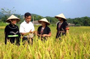 Lãnh đạo xã Bạch Hà, huyện Yên Bình luôn sâu sát quần chúng nhân dân để tuyên truyền, vận động và tìm nguồn phát triển Đảng.