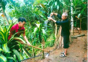 Ông Lâm Văn Lập chăm sóc cây cảnh.
