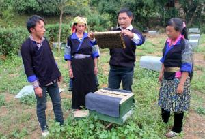 Nông dân huyện Mù Cang Chải trao đổi kỹ thuật nuôi ong.
