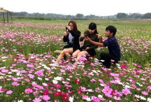 Anh Vũ Bá Thọ hướng dẫn du khách các góc ảnh đẹp trên cánh đồng hoa.