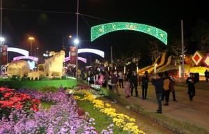 Đường hoa thu hút đông đảo người dân đến tham quan dịp tết Nguyên đán. (Ảnh: Thanh Chi)
