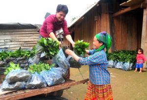 Người dân vận chuyển cây quế giống trồng rừng vụ xuân 2019.