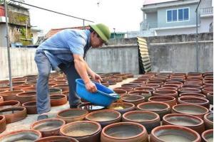 Sản xuất nước mắm Sa Châu, sản phẩm truyền thống của xã Giao Châu, Giao Thủy, Nam Định.