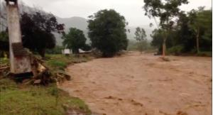 Lốc xoáy quét qua Zimbabwe khiến 65 người thiệt mạng.