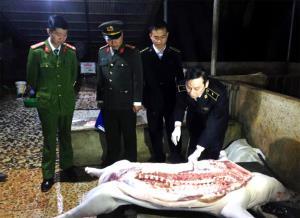 Lực lượng liên ngành kiểm tra các cơ sở giết mổ lợn trên địa bàn.