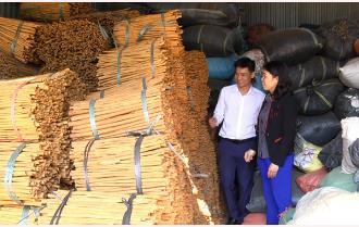 Trấn Yên hiện thực hóa nghị quyết sản xuất nông nghiệp