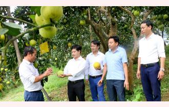 Hội chợ Thương mại và Du lịch huyện Yên Bình năm 2020: Hứa hẹn đặc sắc, hấp dẫn