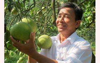 Xây dựng nông thôn mới ở Yên Bình: Những bước đi vững chắc