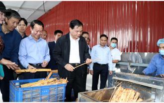 Bộ trưởng Bộ Nông nghiệp - Phát triển nông thôn Nguyễn Xuân Cường thăm mô hình sản xuất theo chuỗi giá trị tại Yên Bái