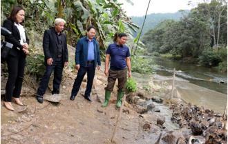 Yên Bái: Hiệu quả từ chi, tổ, hội nghề nghiệp của nông dân