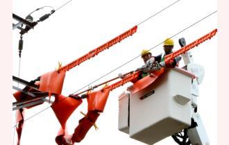 Công ty Điện lực Yên Bái huấn luyện, sát hạch Tổ sửa chữa lưới điện 22kV đang mang điện