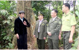 Nét đẹp giữ rừng của người Mông Nà Hẩu