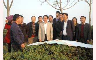 Yên Bái thu hút đầu tư vào nông nghiệp