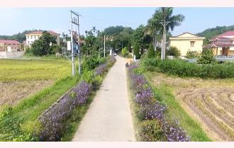 Yên Bái đổi thay nông thôn mới - Bài 1: Người dân - chủ thể trong xây dựng nông thôn mới