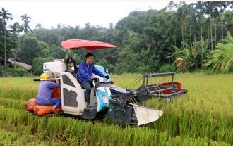 Nông dân Yên Bái thi đua lao động, sản xuất chào mừng Đại hội