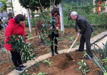 Các cấp Hội Đông y đẩy mạnh phong trào trồng cây thuốc đầu xuân đến mọi người dân, trường học, trạm y tế.