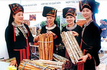 Các thiếu nữ người Dao Văn Yên giới thiệu sản phẩm quế vỏ xuất khẩu. (Ảnh: T.L)