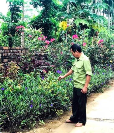 """Cựu chiến binh xã Tuy Lộc (thành phố Yên Bái) tích cực trồng và chăm sóc hoa hai bên đường trên những tuyến đường tự quản đảm bảo """"sáng - xanh - sạch - đẹp""""."""