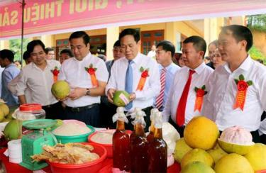 Các đại biểu tham quan gian trưng bày bưởi và nông sản của người dân các xã vùng hạ huyện và Đông hồ Thác Bà.