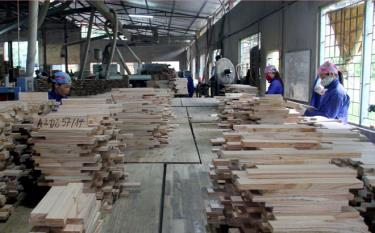 Processing plantation timber is an economic strength of Yen Bai province.