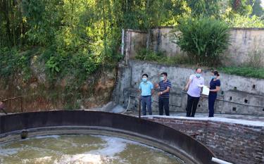 Phòng Tài nguyên và Môi trường huyện Văn Yên phối hợp với UBND xã An Bình kiểm tra hệ thống xử lý nước thải tại Nhà máy giấy An Bình.