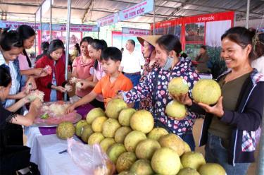 Tại Hội chợ Thương mại và Du lịch huyện Yên Bình năm 2020 dự kiến có trên 50 gian hàng trưng bày giới thiệu quảng bá sản phẩm Bưởi Đại Minh và các sản phẩm nông sản mang đậm hương vị quê hương Hồ Thác.