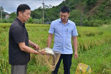 Ông Nguyễn Quốc Tuyển trao đổi kỹ thuật nuôi cá với cán bộ xã Yên Thái.