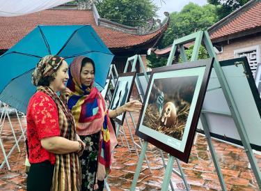 Cuộc thi và triển lãm ảnh nghệ thuật Việt Nam 2020 thu hút sự quan tâm của công chúng.
