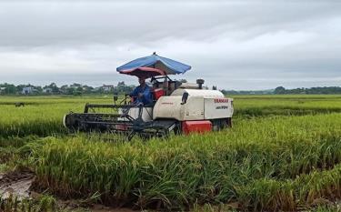 Nông dân Yên Bái đưa máy móc vào sản xuất nông nghiệp.