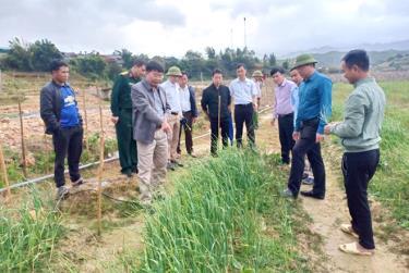 Đoàn công tác tham quan mô hình trồng tỏi tại xã Nậm Khắt.