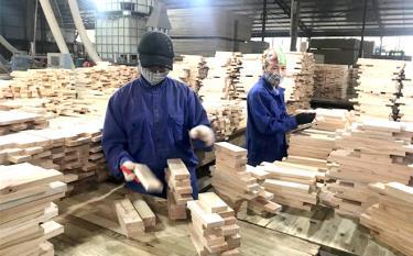 Sản xuất ván ép xuất khẩu tại Doanh nghiệp tư nhân Đăng Khoa, xã Báo Đáp.