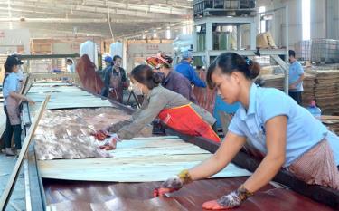 Chế biến gỗ rừng trồng là ngành hàng xuất khẩu thế mạnh của tỉnh Yên Bái.