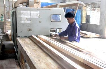 Các doanh nghiệp chế biến gỗ rừng trồng từng bước nâng cao công nghệ chế biến, góp phần nâng cao giá trị kinh tế gỗ rừng trồng.